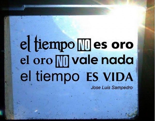 . Vinilos Textos y Frases Cita de Jose Luis Sampedro 02779