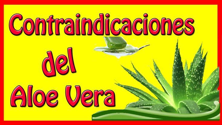 Contraindicaciones del Aloe Vera / Efectos Secundarios de la Sábila