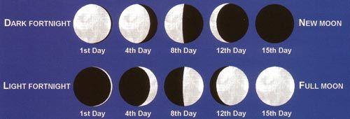 The Hindu Calendar