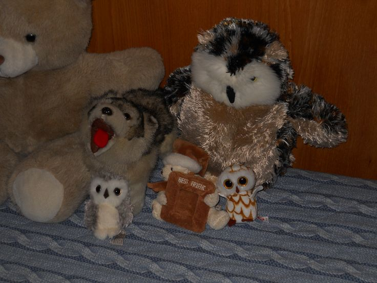 My Winter plushes.