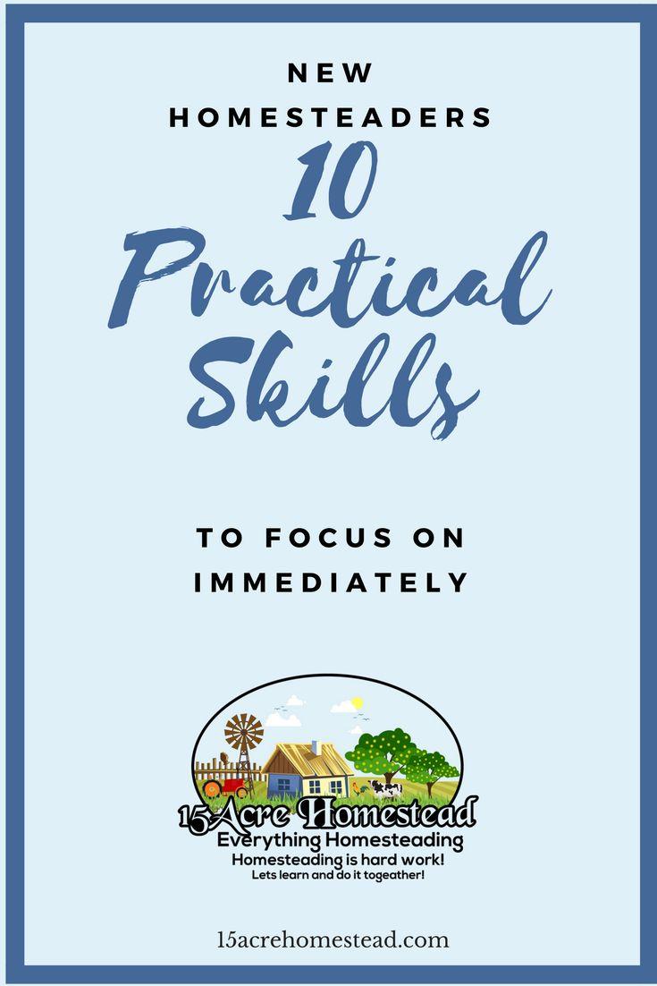 New Homesteaders: 10 Practical Skills to Focus on Immediately