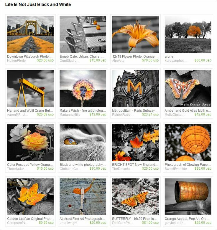 Curated by SingingPhotographer on Etsy.  Life Is Not Just Black and White.  Selective colour.