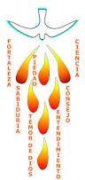 Resultado de imagem para paloma del espiritu santo confirmacion