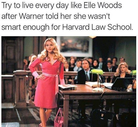legally blonde quotes harvard - photo #21