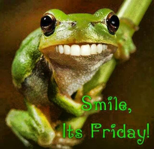 Funny Pictures About Friday: Frogs. Smile Its Friday. #humor #funny