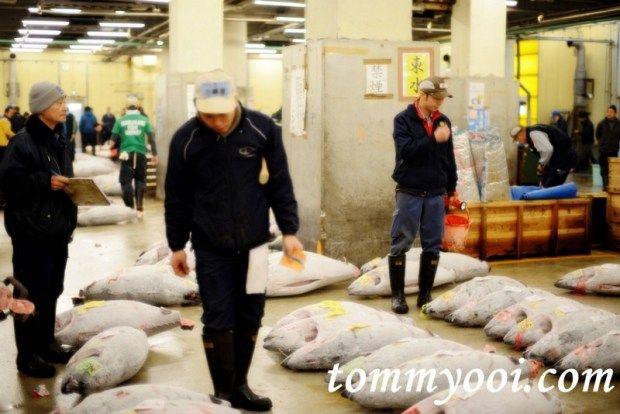 15 must visit tokyo attractions & travel guide - 5. Tsukiji Fish Market