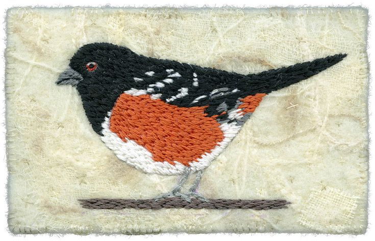 "Spotted towhee, male. Needle-felted background. Wool and synthetics felted on an embellisher machine. Hand embroidered bird and details. In preparation for my ""In the Garden"" exhibition at Circle Craft Gallery with Vanessa Thackray Cunningham, May 31-June 18 2013. 5 ½"" x 3 ½"" 9"" x 11"" framed SOLD www.chursinoff.com/kirsten/"