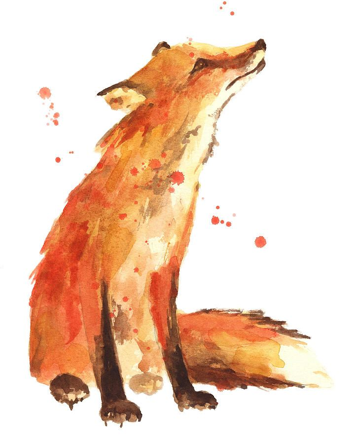 Red Fox Painting - Fox Painting - Print From Original by Alison Fennell