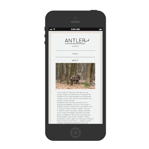 Antler wine website - mobile page example