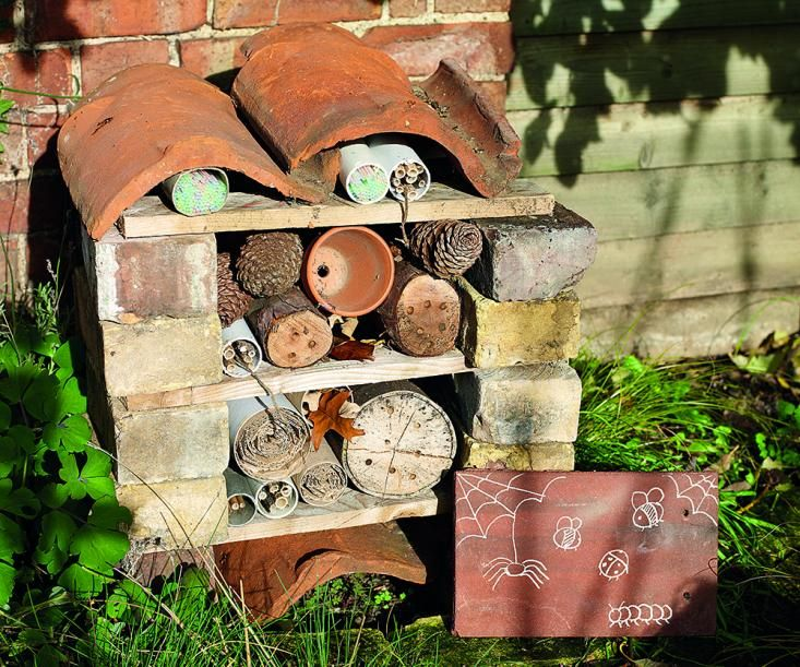 DIY build insect house - functional and picturesque.