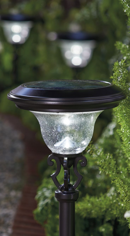 The 25+ best Pathway lighting ideas on Pinterest ...