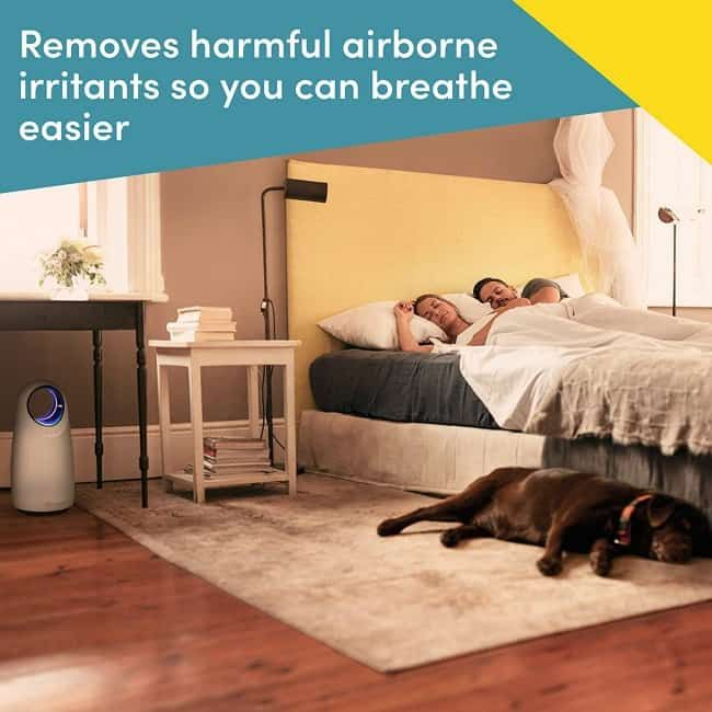 The 11 Best Air Purifiers The Eleven Best In 2020 Filter Air Purifier Air Purifier Purifier,Lilly Pulitzer And Starbucks