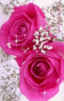 GIFS HERMOSOS: arboles y noel de navidad encontradas en la web