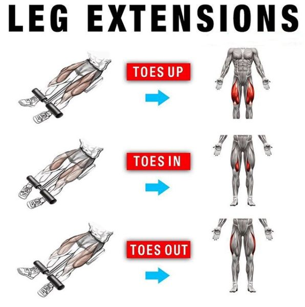 Leg Extensions Workout - Yeah We Train !