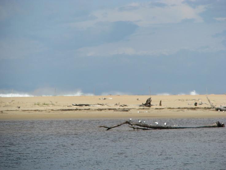 Scamander Beach TAS Australia