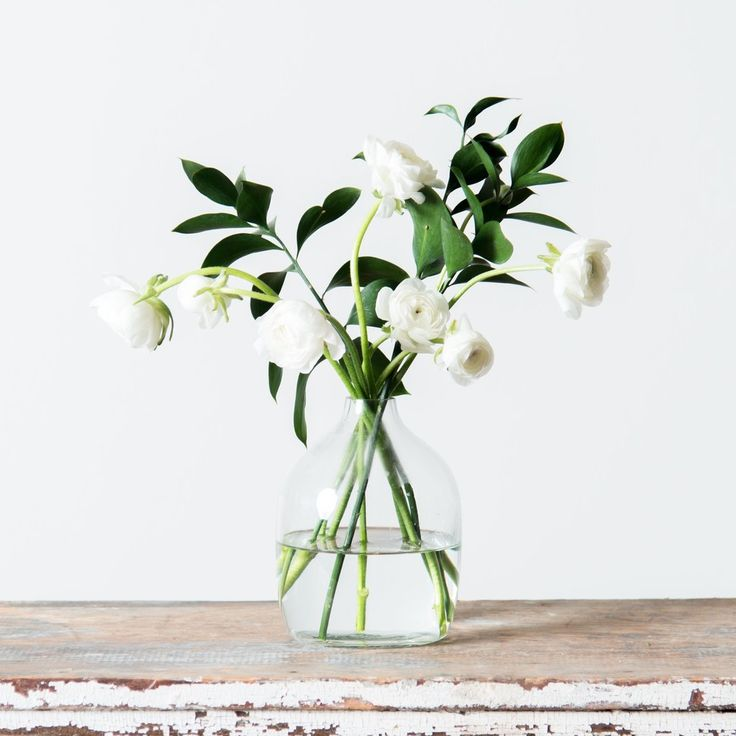 Anne Glass Vase- short, please.