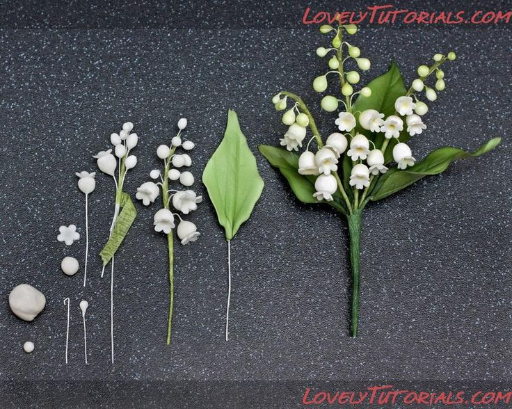 Название: Lily of the Valley, lots of pictures and information, many are RL size but could be reduced.
