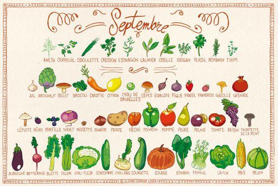 legumes de saison - claire-sophie (pissenlit au jardin)