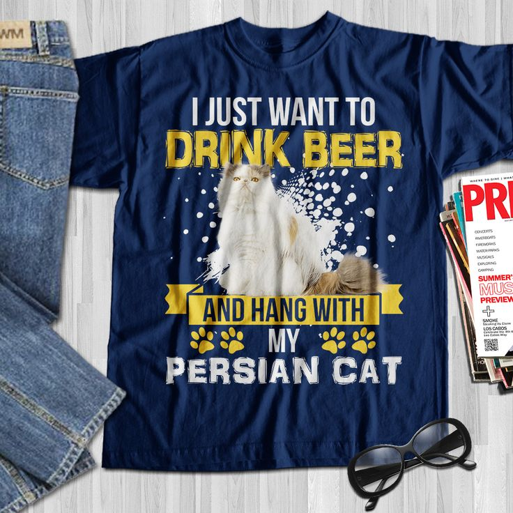 I Just Want To Drink Beer And Hang With My Persian Cat -4738