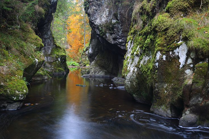Die Haslach am Rechenfelsen ...im Südschwarzwald ist ein eindrucksvolles Naturmonument.