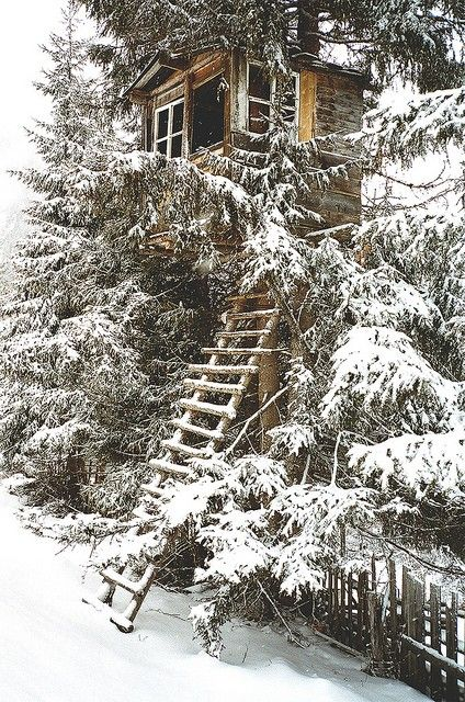tree house in the snow…That ladder would be tricky but I'm sure there's a roaring fire, a good book and some wine awaiting us. (Put on those snow boots & enjoy. What fun!)