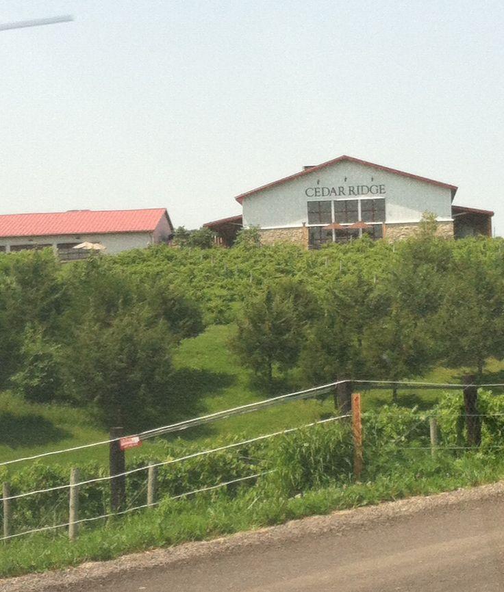 13 best images about cedar ridge winery on pinterest for Cedar ridge