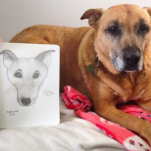 I just tried so hard to draw a portrait of my dog Bubba, and it is super hard! This is only my first attempt though!! #creative_n_crafty #love2draw #pencildawing #frontondogdrawing #bubba #dog #lovemydog #drawing #firstattempt
