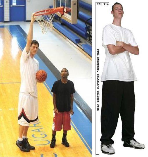Robert Wadlow Compared Yao Ming