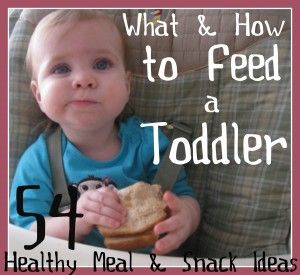 How to feed a toddler