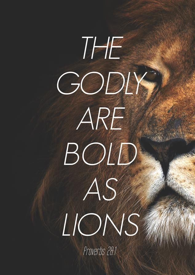 spiritualinspiration:  As a believer in Jesus Christ, you are called to live a bold, confident and overcoming life. You don't have to live under the weight and pressure of fear. You don't have to live with daily anxiety. Because of Jesus, fear, worry and uncertainty are beneath you. When you rise up in faith, knowing that God is with you and for you, all doubt and fear has to leave your life.