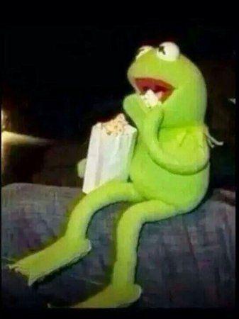 ℒaᴄiყxx | kermit ☆ | Blank memes, Memes, Kermit