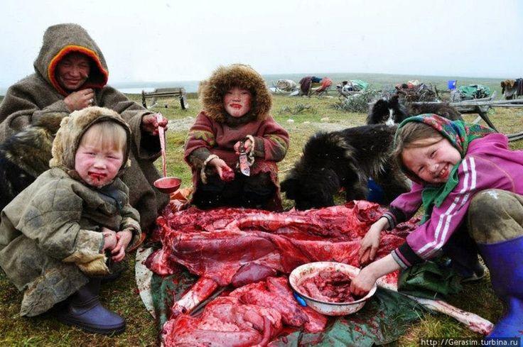 Nenetler - Nyenyecek - Ненцы - Nenets people   Nenetler ...