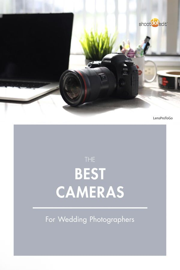 See The Best Cameras For Shooting Weddings Including The Top Camera From Nikon Canon And Sony Learn The Factor Best Camera Wedding Camera Best Canon Camera