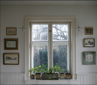 small plants on a windowsill, may help improve my lack of a green thumb