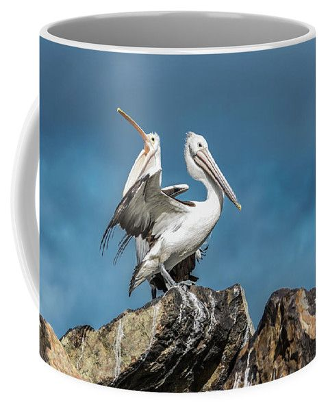 Pelican Coffee Mug featuring the photograph The Pelicans by Racheal Christian