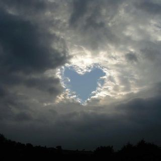hearts+in+nature | Hearts in nature | Hearts