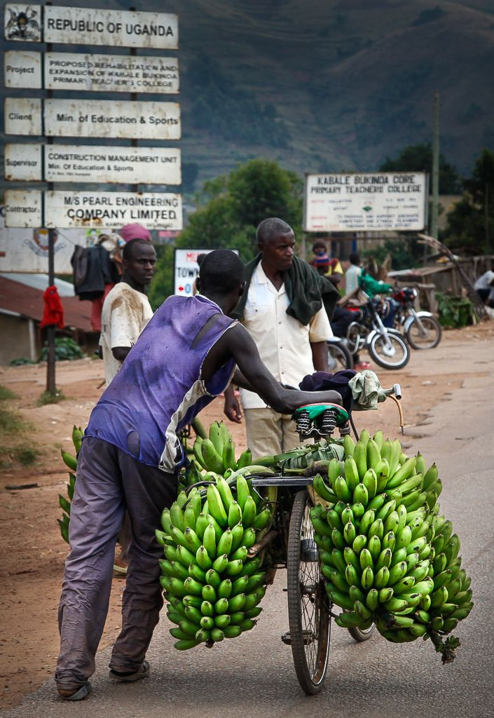 Banana bike, Uganda. Photo (c) Miikka Järvinen 2012. Original gallery http://miikkajarvinen.wordpress.com/2014/02/22/life-wildlife-uganda/