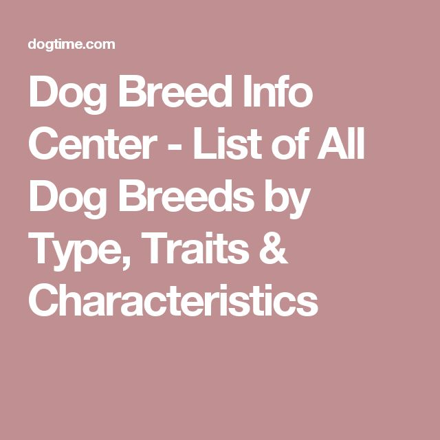 Dog Breed Info Center - List of All Dog Breeds by Type, Traits & Characteristics