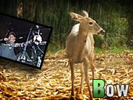 Bow Hunting in Indiana: 3 deer down, plus blind replacement and food plot tips. #deer #hunting #bowhunting