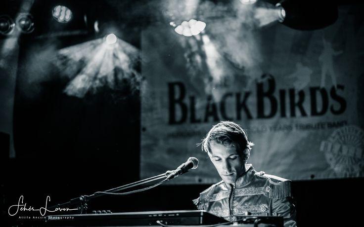 The BlackBirds A38 2017.12.06