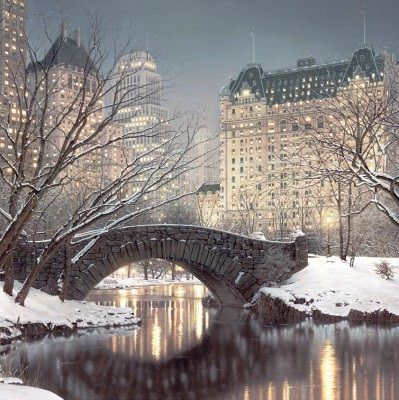 Central Park covered with snow