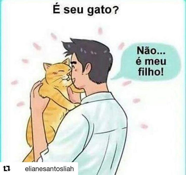 ISSO MESMO MEU FILHO! ❤️❤️❤️ #amoanimais  #petmeupet  #gato  #cachorro  #filhode4patas  #amogato  #amocachorro