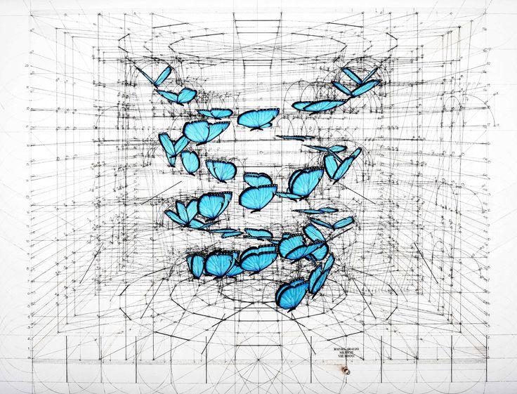 Двойная спираль из голубых морфо