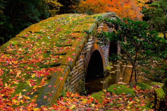 Kanazawa Japan i autumn