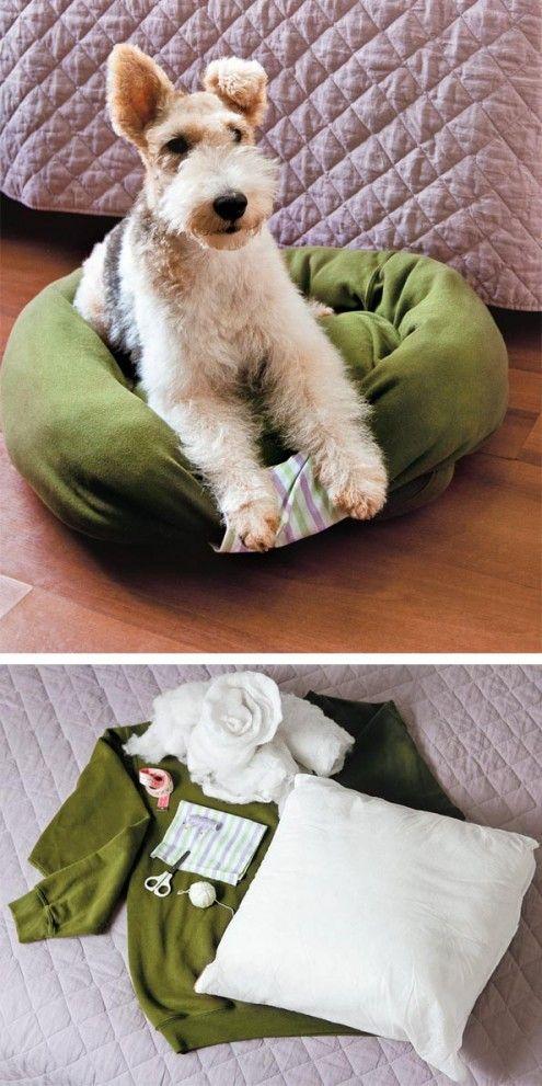 Cama para nuestro perro reciclando un suéter viejo y un cojín