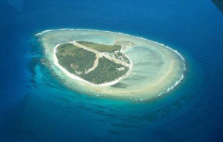 la gran barrera de coral de noche - Buscar con Google