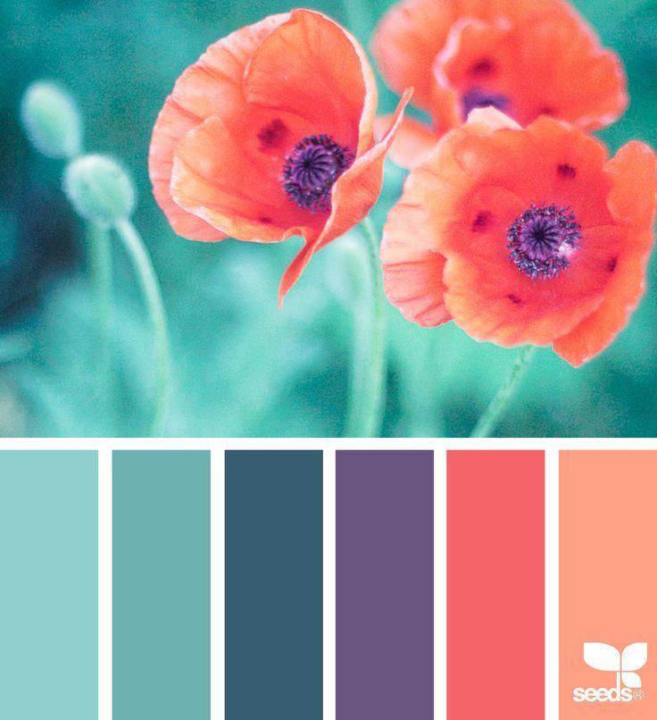 Color Flora Nature Color Palette Teal Color Schemes