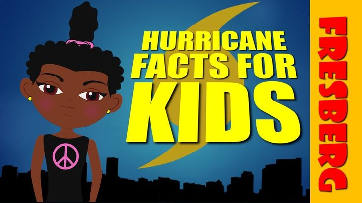 nice Bird gets a hurricane warning notification & she learns  hurricane facts for kids Check more at http://sherwoodparkweather.com/bird-gets-a-hurricane-warning-notification-she-learns-hurricane-facts-for-kids/