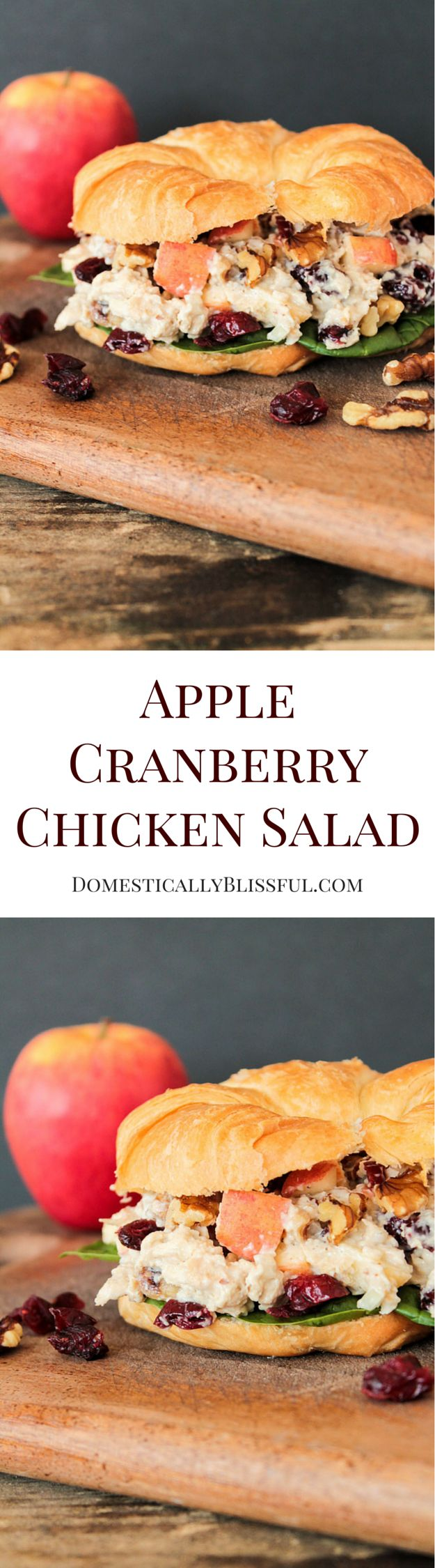 Vegetarian Apple Cranberry Chicken Salad recipe from Domestically Blissful