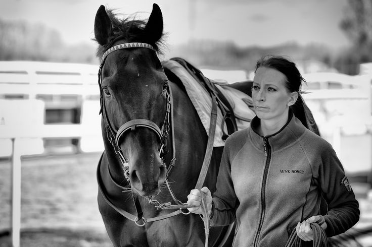 A Racehorse by Anders Stangl on 500px
